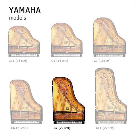 YAMAHA C7